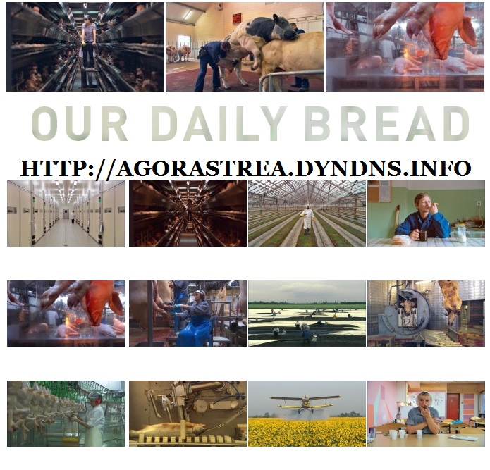 OUR DAILY BREAD - IL NOSTRO PANE QUOTIDIANO. DOCUMENTARIO. ANNO 2003/2005